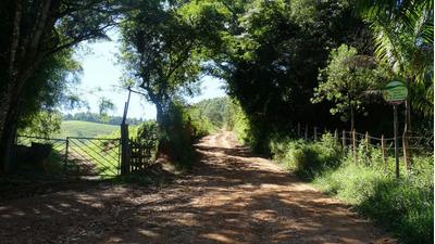 Sítio A 5 Km De Baependi ,sul De Minas , Sentido Cachoeira Itaúna, Bom De Água ,com 17,5 Ha E Fácil Acesso. - 3569