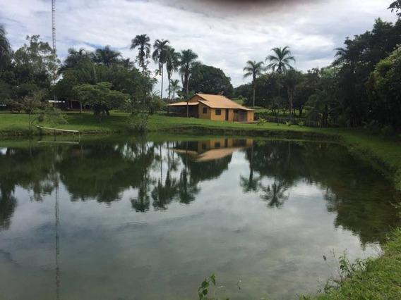 Fazenda Para Venda Em Paranaíba, Centro - 1054