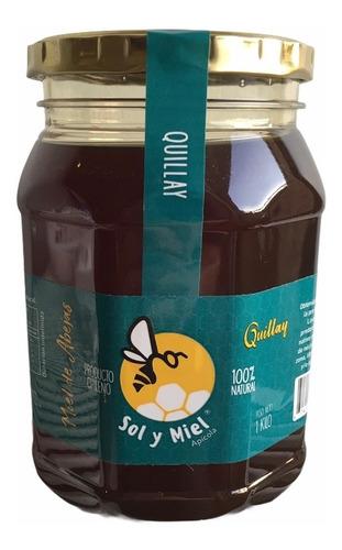Miel Natural Quillay 1 Kg Sol Y Miel