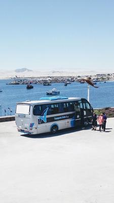 Alquiler De Minibús Con Chófer