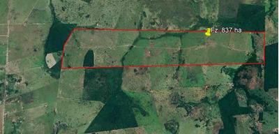 Fazenda 837 Hectares Em Araguapaz Goiás