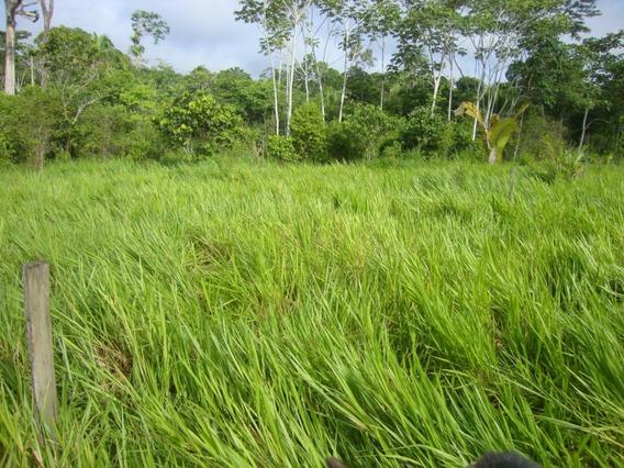 Vendo Terra Sena Madureira Acre