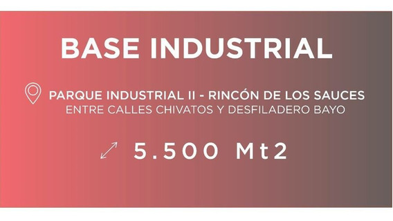 Alquiler Galpon C/oficinas - Rincon De Los Sauces