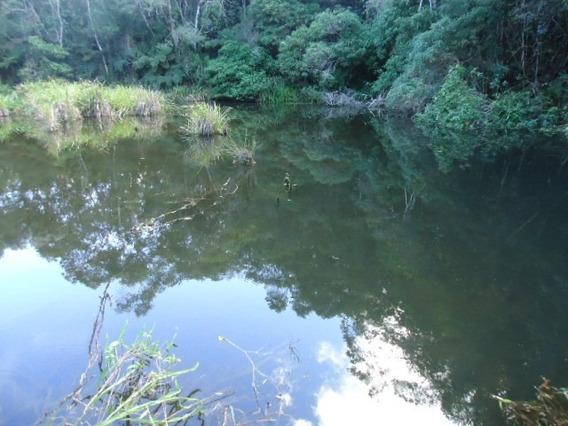 Lindo Terreno Com Lago