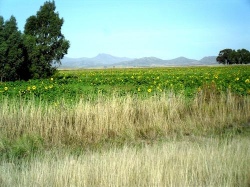 Saavedra, Tornquist, Sierra De La Ventana