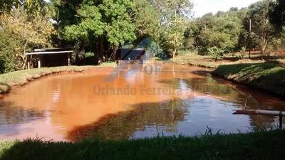 Sítio Para Venda Em Avaré, Ponte Alta, 3 Dormitórios, 1 Suíte, 2 Banheiros, 2 Vagas - St 024