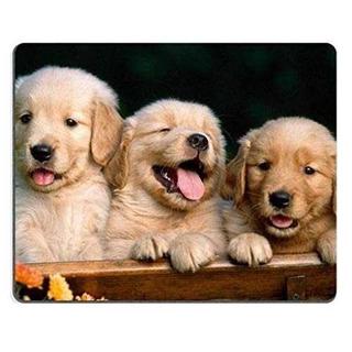 Golden Retriever Perros Cachorros Mascotas Mouse Pad S