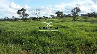Fazenda Em Guriatã Mg - 336,38 Hectares - 69,5 Alqueires - 171