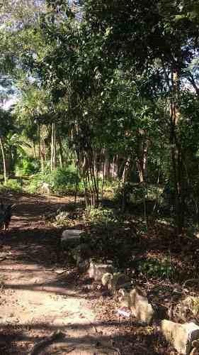 Se Vende Terreno En Quintana Roo