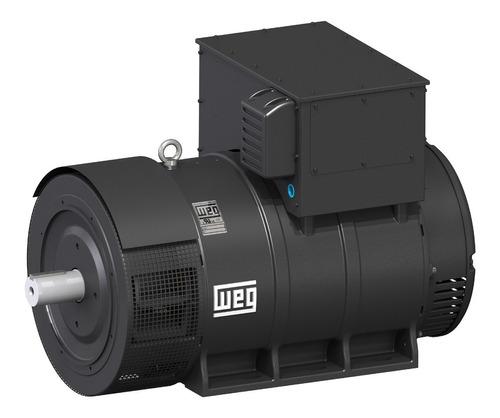 Imagen 1 de 3 de Generador Alternador Sincrónico Weg 19kva B3t Doble Rodamien