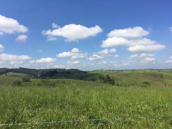 Ótimo Investimento, Terrenos Para Chácara Região De Igaratá.