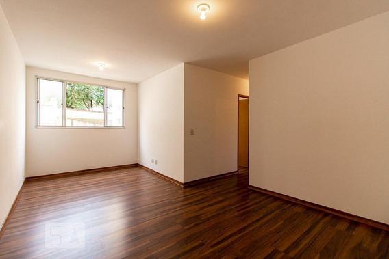 Apartamento Para Aluguel - Planalto, 3 Quartos, 70 - 892926000