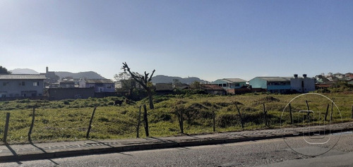 Terreno - Ipiranga - Ref: 1285 - V-te0117