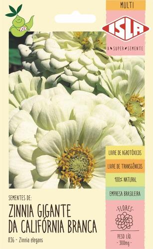 Semente De Zinnia Dobrada Califórnia Branca Flor
