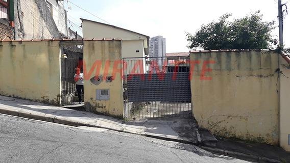 Terreno Em Vila Ede - São Paulo, Sp - 313158