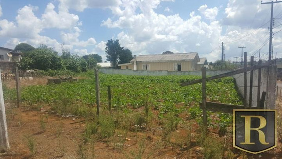Terreno Para Venda Em Guarapuava, Vila Bela - 428862