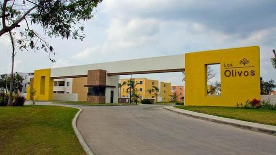 Renta De Departamento En Altamira Fracc. Los Olivos