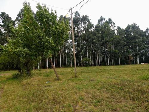 Imagen 1 de 14 de Terreno Lote En Colon Entre Ríos -vendo-permuto-financio-