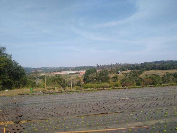 L.s Terrenos Plainos Com Muita Qualidade Em Ibiuna