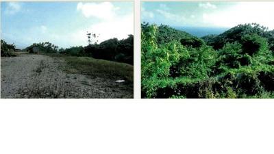 Terrenos En Samaná, Próximos A Puerto Bahía