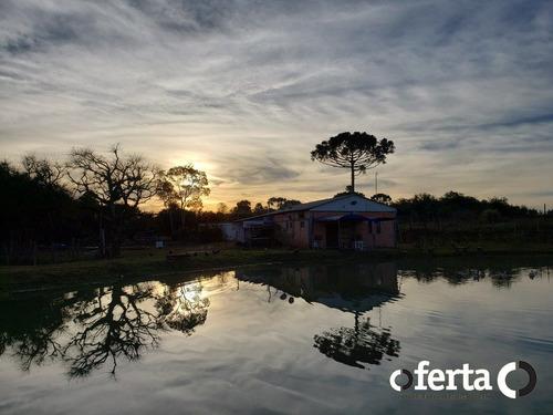 Imagem 1 de 15 de Chacara Com Casa - Rodeiozinho - Ref: 743 - V-743