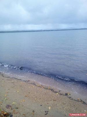 Cumaná San Antonio Del Golfo Terreno 80.000 M2 En Venta