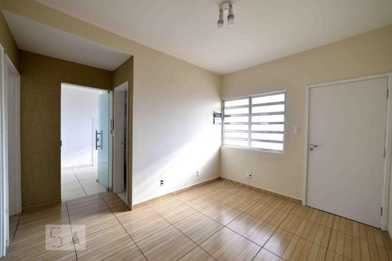 Apartamento Para Aluguel - Cambuci, 2 Quartos, 52 - 893116897