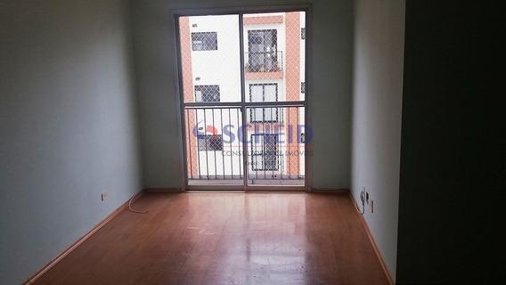 Apartamento Na Vila Mascote Em São Paulo - Mc7550