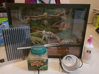 Kit Para Reptiles (terrario Pt 600+accesorios)