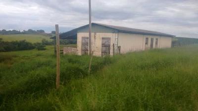 fazenda A Venda Com 36 Alqueires E Plantação De Soja Região De Itapetininga Sp - 1198