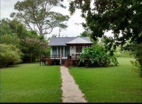 Alquiler Casa En La Isla Delta Tigre Con Muelle Propio