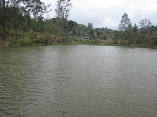 Venda Sitio 7alqs. Imenso Lago Juquitiba Brasil - 535