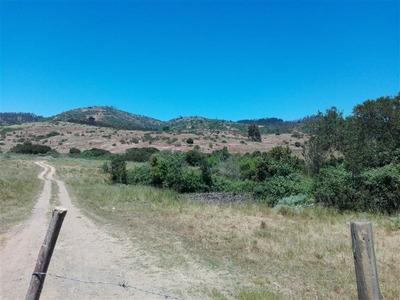 Sitio En Venta En Algarrobo
