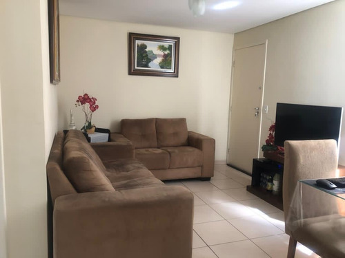 Imagem 1 de 15 de Apartamento - Paqueta - Ref: 49663 - V-49663