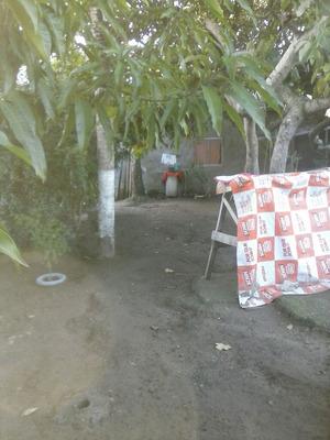 Terreno Com Galpão Que Serve Como Casa.
