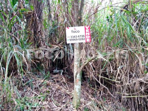 Terreno Com 1250m² Na Vila Principal