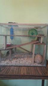 Casa Para Hamster O Roedor