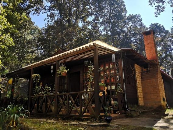 Cabaña En El Bosque, A Solo 20 Minutos Del Centro