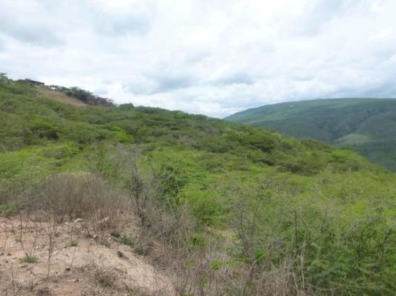 Terreno En Venta El Manzano Mls 19-13713 Rbl