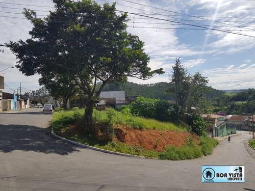 Imagem 1 de 5 de Terreno Em Rua - B0520-v