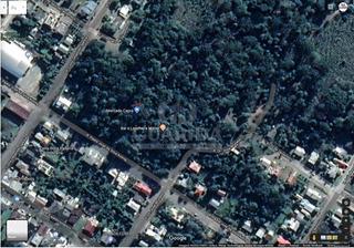 Area - Centro - Ref: 198407 - V-198519