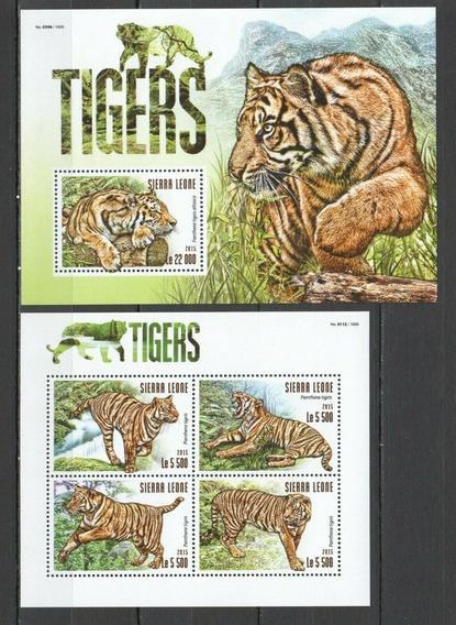 2015 Fauna - Felino- Tigres - Sierra Leona Mnh