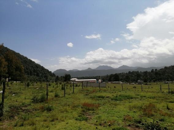 Terreno 500 Mts Cerca Prepa Tres Marías, Colonia Nueva