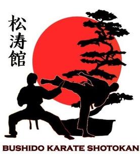 Treinamento Karate Shotokan - Video Aulas