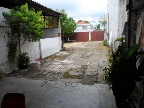 Terreno A Venda Em Veleiros - 11327