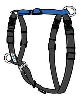 Azul9 Mascota Productos Equilibrio Arnes Hebilla Cuello