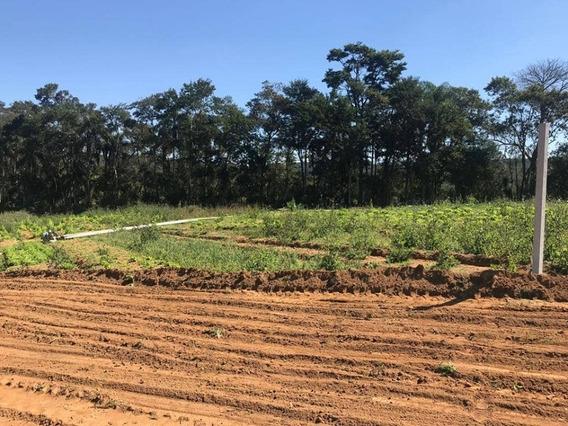 Vende-se Terreno Em Ibiúna Sp 600 M2 Demarcados E Planos J