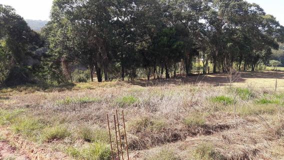Terrenos Planos Com 1000m² Para Chácara Em Ibiuna 03
