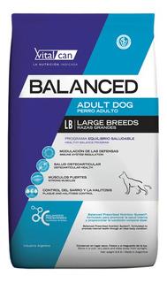 Vitalcan Balanced Perro Adulto Grande X 20 Kg Env S/c