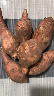 Batata - Camote - Papa Dulce (kg)